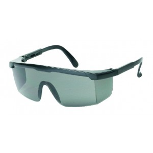 iNOX® Guardian™ - Gray lens